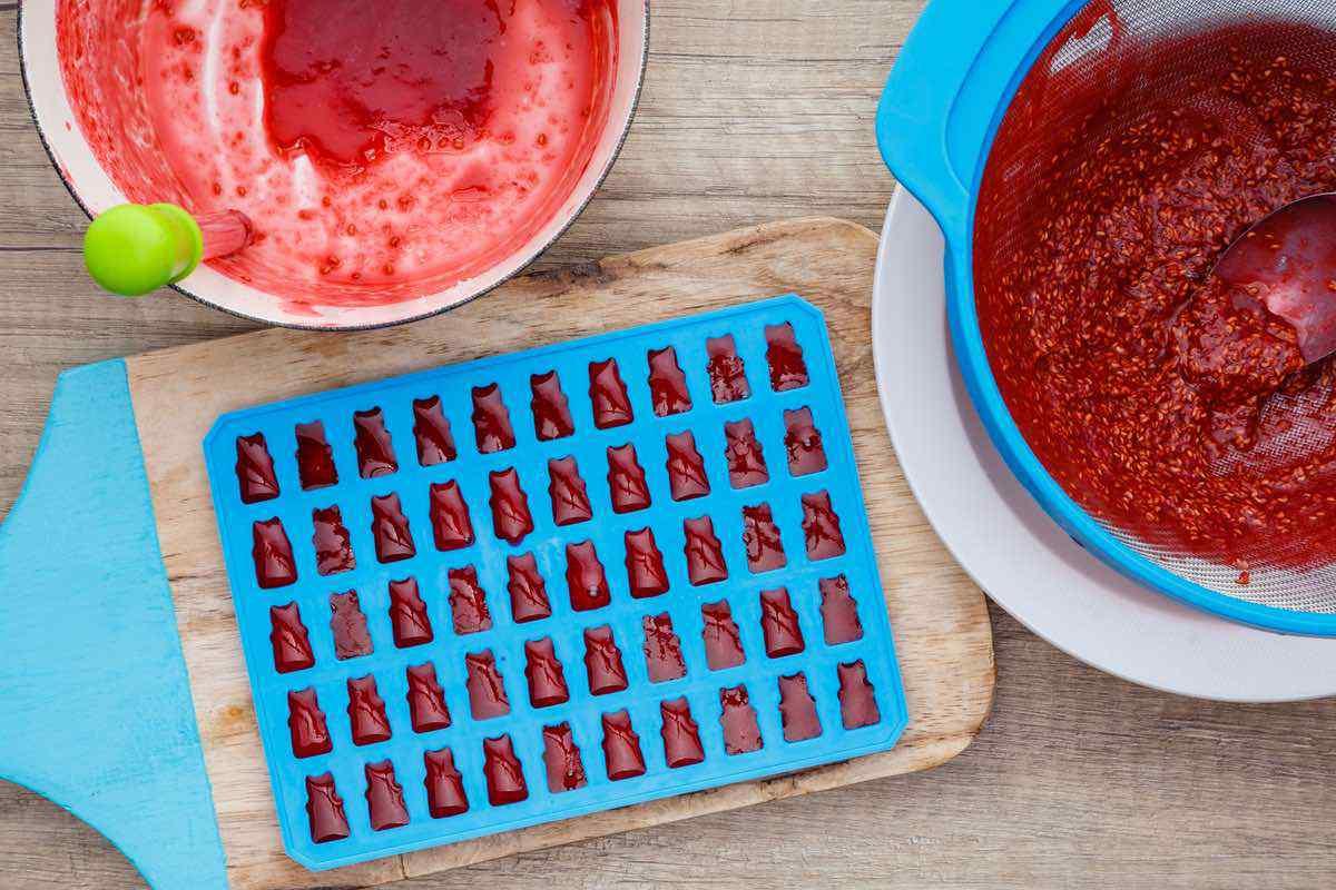 Homemade Raspberry Gummy Fruit Snacks
